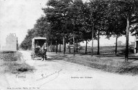 carte postale ancienne de Forest Avenue van Volxem