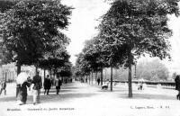 Cartes postales anciennes de bruxelles boulevard du for Boulevard jardin botanique